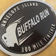 Buffalo2015-3