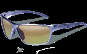 sunglasses-10700157.qtm.1_1